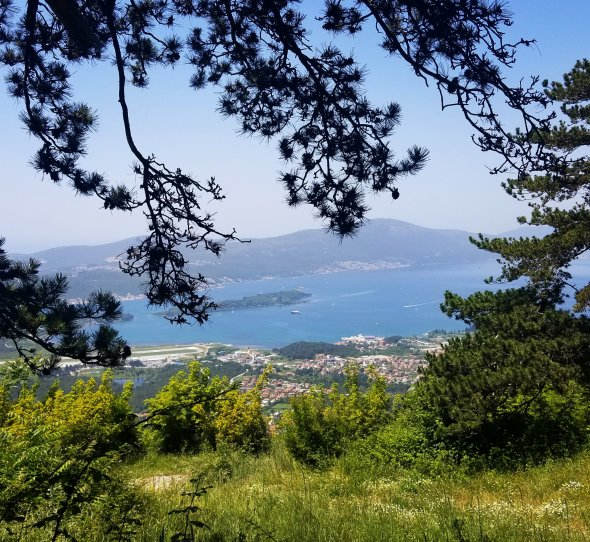 View over Tivat Bay with Lustica Peninsula in the distance